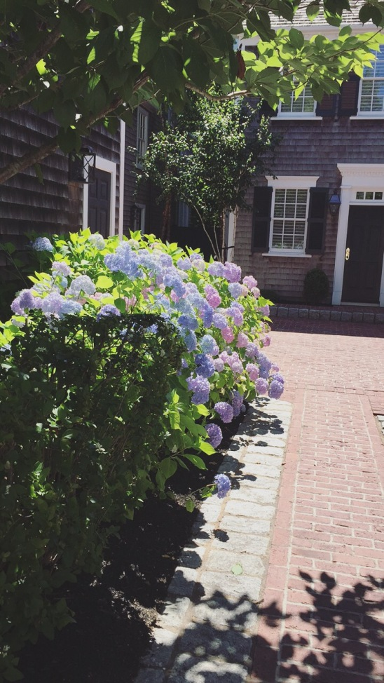 homes in edgartown
